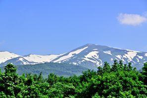 Shonai (Yamagata)